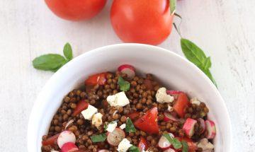 Salade de lentilles, tomate, radis